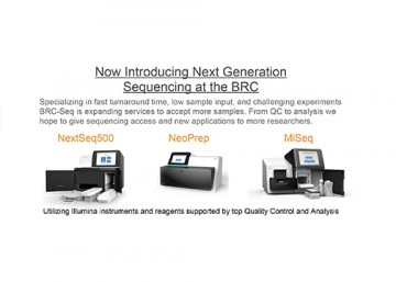 Introducing Next Generation Sequencing at The Biomedical Research Centre